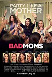 bad-moms-2813.jpg_Comedy_2016