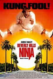 beverly-hills-ninja-1093.jpg_Action, Comedy_1997