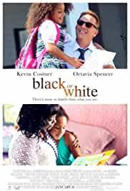 black-or-white-17492.jpg_Drama_2014