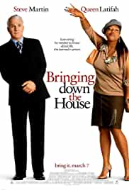 bringing-down-the-house-12809.jpg_Comedy_2003