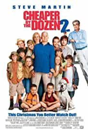cheaper-by-the-dozen-2-1320.jpg_Adventure, Family, Comedy_2005