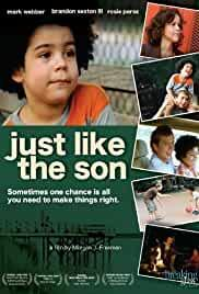 just-like-the-son-19907.jpg_Drama_2006