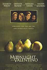 moonlight-and-valentino-15759.jpg_Drama, Comedy, Romance_1995