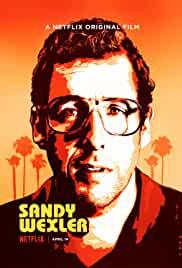 sandy-wexler-7562.jpg_Comedy_2017