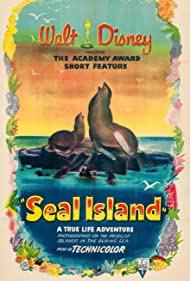 seal-island-33173.jpg_Short, Documentary, Family_1948