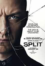 split-12959.jpg_Thriller, Horror_2016