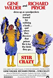stir-crazy-15639.jpg_Crime, Comedy_1980