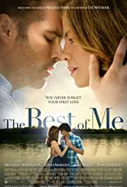 the-best-of-me-27576.jpg_Drama, Romance_2014