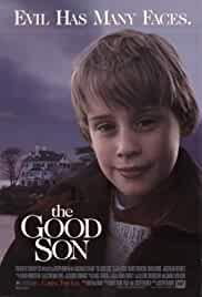 the-good-son-3373.jpg_Thriller, Horror, Drama_1993