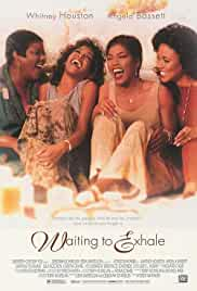 waiting-to-exhale-7210.jpg_Romance, Drama, Comedy_1995