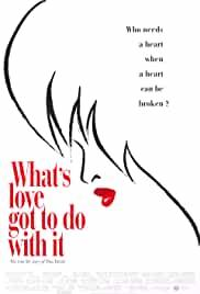 whats-love-got-to-do-with-it-5931.jpg_Biography, Music, Drama_1993
