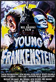 young-frankenstein-15634.jpg_Comedy_1974